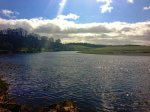 The sun came out to emphasise the beauty of Tweed. Looking across from the Boathouse beat to Ladykirk.