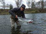 9lb salmon caught on Lower Birgham by Shun Washiya on 2nd April 2013. This is his first ever springer Lot's of thanks to boatmen Tom and Brian for making dream come true.